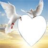 fotomontaje con palomas blancas